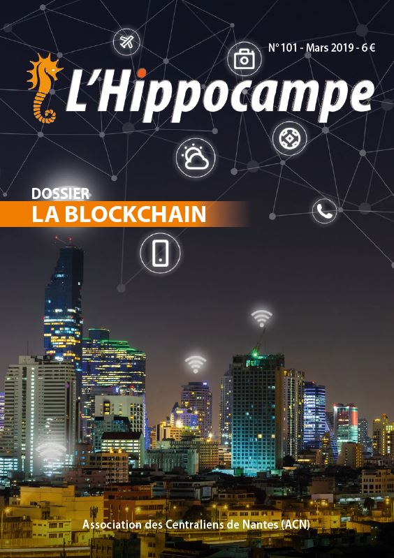 Hippocampe 101