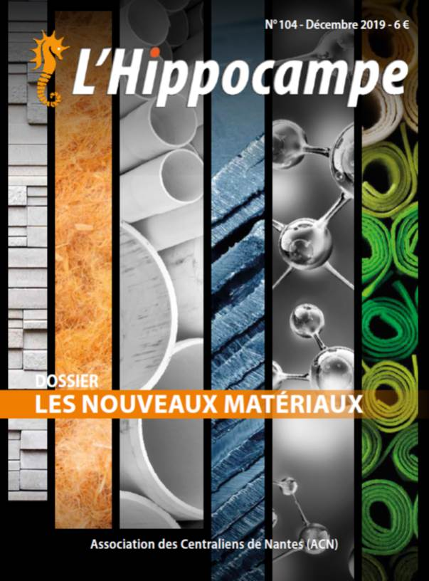 Hippocampe 104