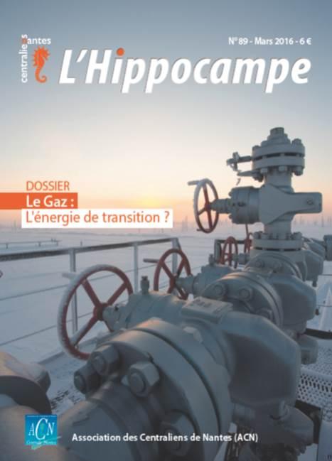 Hippocampe 89