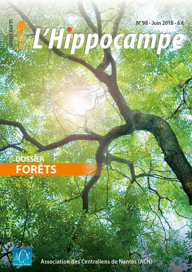 Hippocampe 98